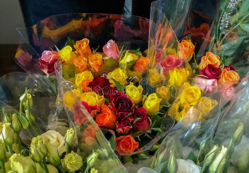 玫瑰五颜六色的花束-在桃红色,橙色,黄色和红色, sur 库存图片