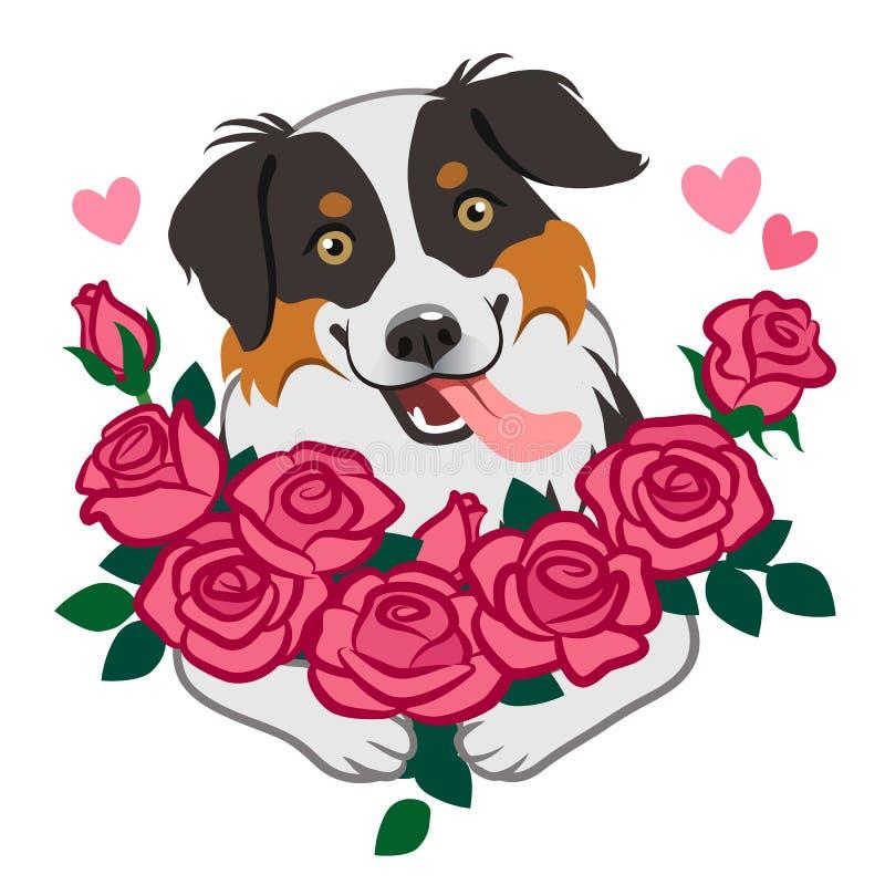 玫瑰传染媒介在白色隔绝的动画片例证逗人喜爱的微笑的成群狗藏品花束  宠物恋人,友谊,爱, 库存例证