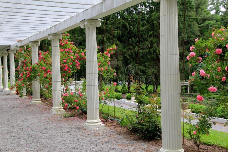 玫瑰园和树荫处与石路, Yaddo庭院,萨拉托加斯普林斯,纽约, 2014年 库存照片