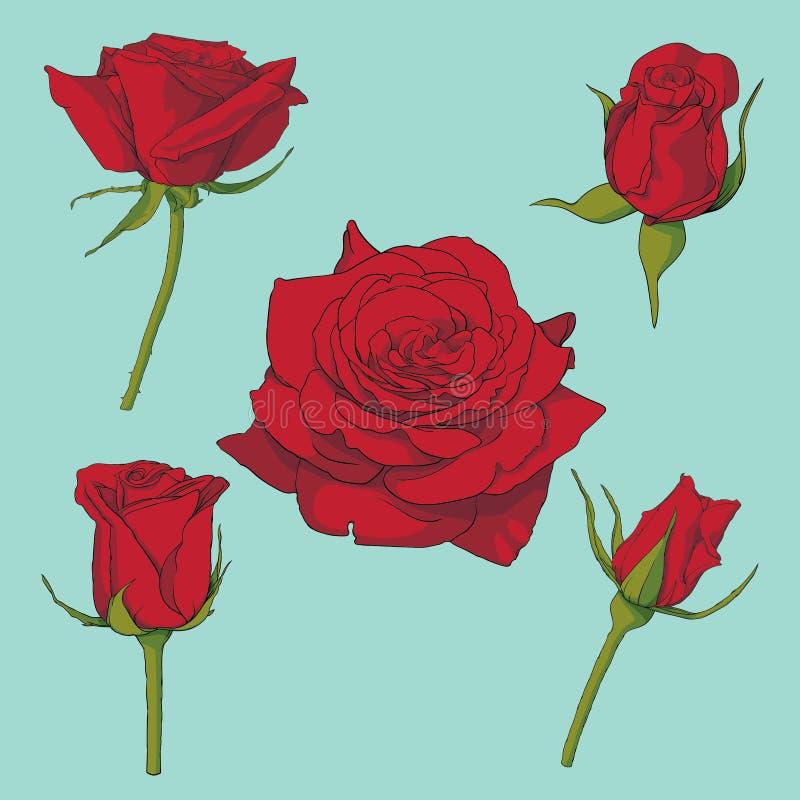 玫瑰导航集合 皇族释放例证