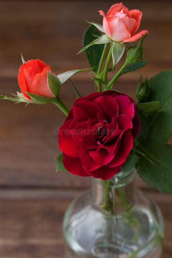 玫瑰小花束在木背景的 免版税图库摄影