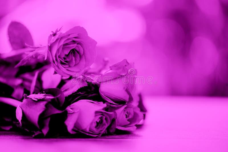 玫瑰开花花束过滤器颜色桃红色上升了在桌自然背景的情人节恋人概念的 免版税图库摄影
