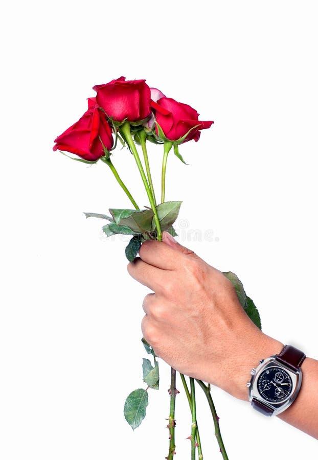 玫瑰您 免版税库存图片