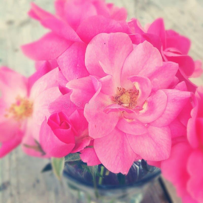 玫瑰桃红色玫瑰花束在花瓶的 免版税图库摄影