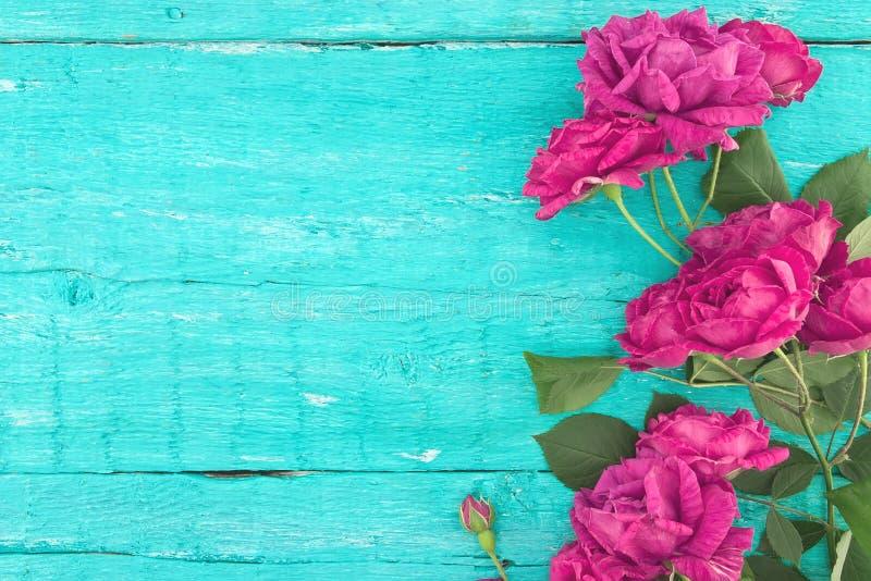 玫瑰框架在绿松石土气木背景的 春天flo 免版税图库摄影