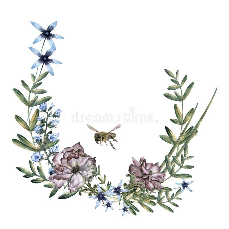 玫瑰的构成与野花和蜂的 背景查出的白色 库存例证