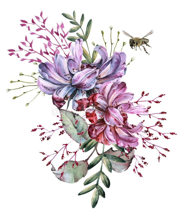 玫瑰的构成与野花和蜂的 背景查出的白色 皇族释放例证