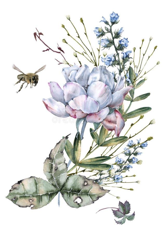 玫瑰的构成与野花和蜂的 背景查出的白色 向量例证