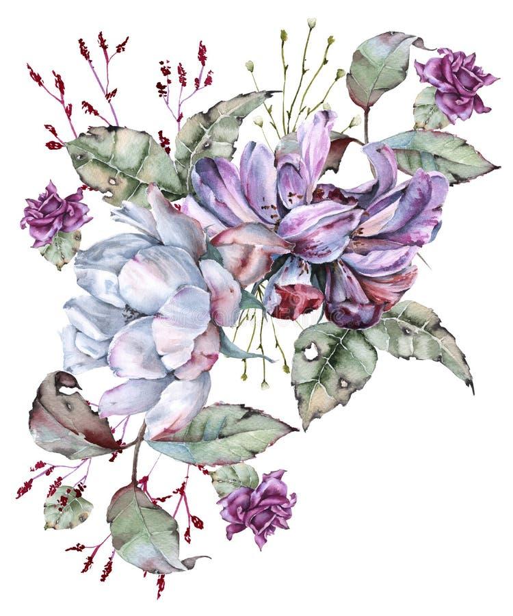 玫瑰的构成与野花的 背景查出的白色 库存例证