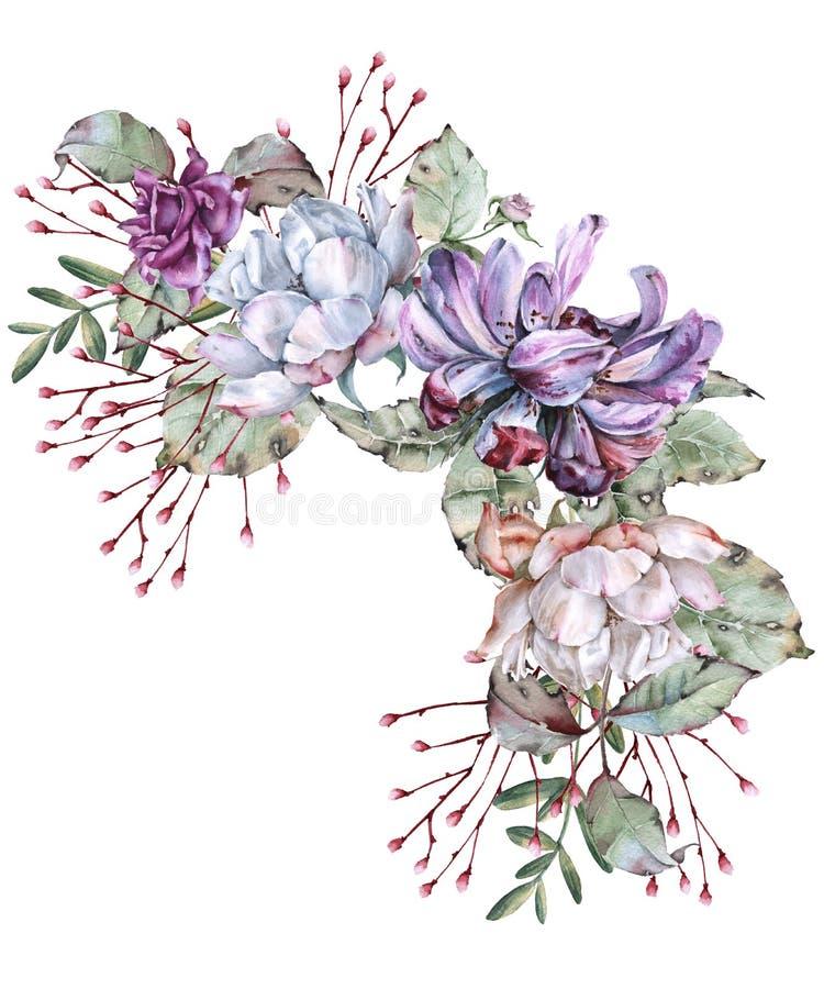 玫瑰的构成与野花的 背景查出的白色 向量例证