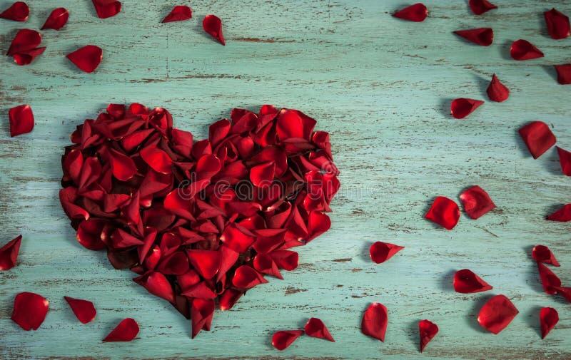 玫瑰的瓣在心脏形状的在蓝色木头的 图库摄影