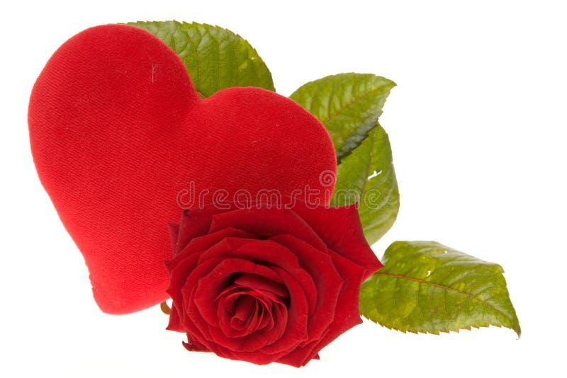 玫瑰色华伦泰 免版税库存照片