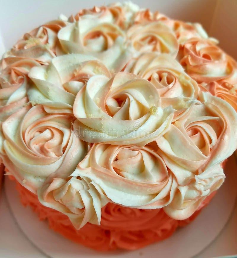 玫瑰色珊瑚蛋糕 库存图片