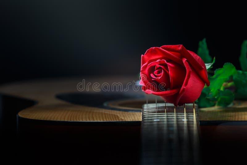 玫瑰色的静物画和吉他 免版税库存图片