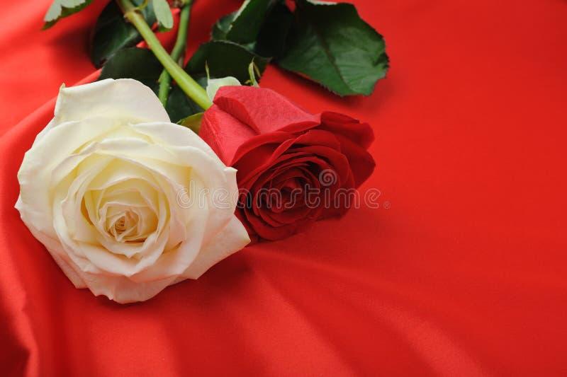 玫瑰色缎二 免版税库存图片