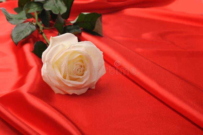 玫瑰色缎 图库摄影