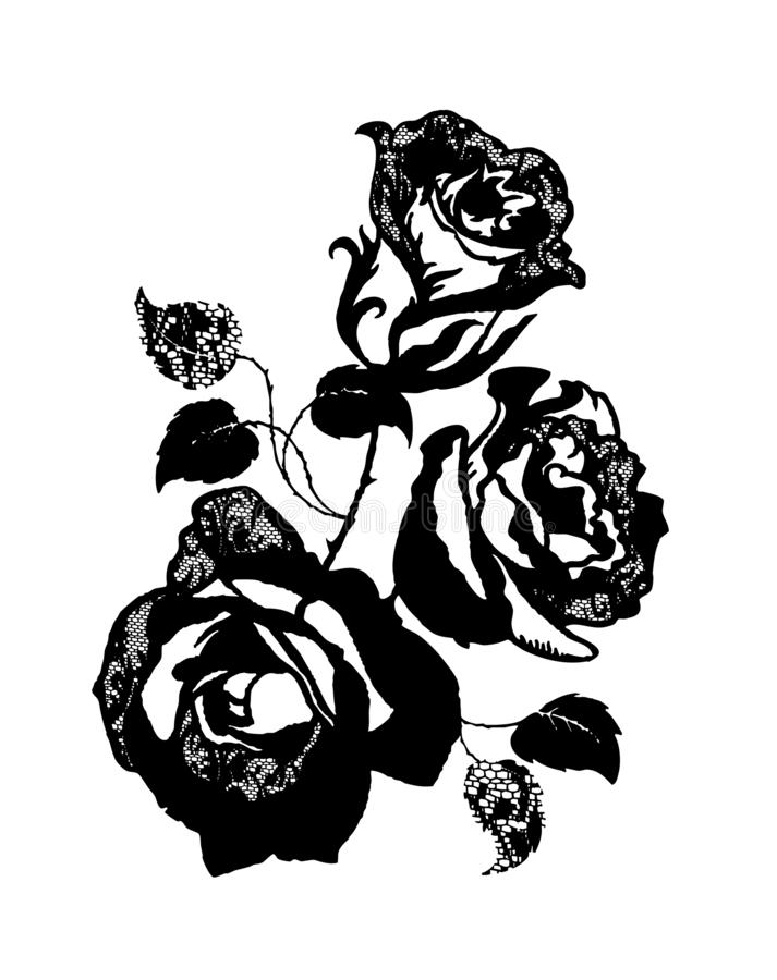 玫瑰色花束,T恤杉图表的例证 皇族释放例证