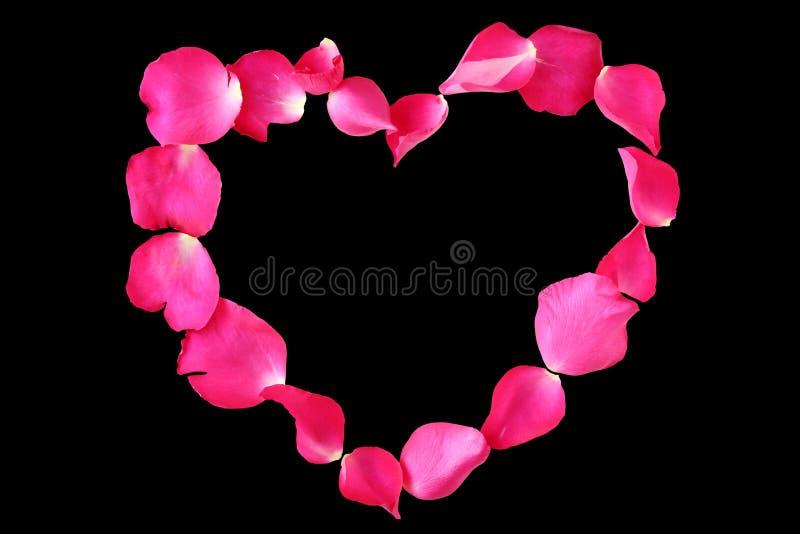 玫瑰色花的瓣在心脏在黑背景塑造隔绝 库存图片
