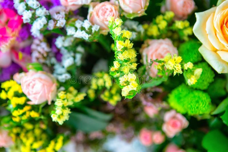玫瑰花和瓣背景 美丽的花花束礼物的 2007个看板卡招呼的新年好 免版税图库摄影