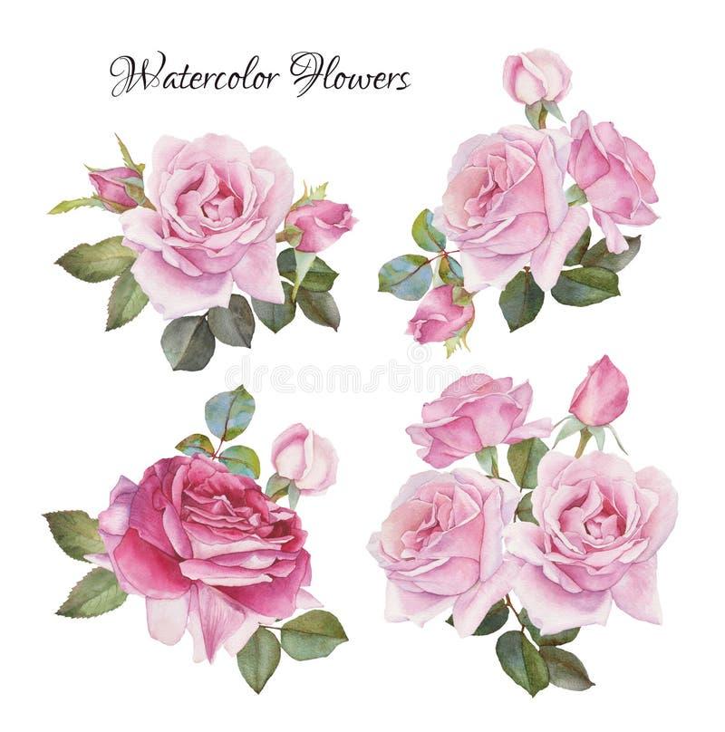 玫瑰花束 花被设置手拉的水彩玫瑰 皇族释放例证