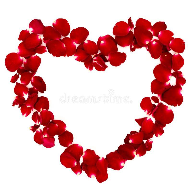 玫瑰花瓣在心形安排了 免版税库存照片