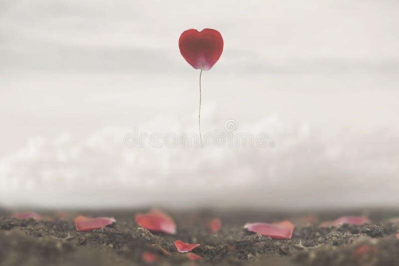 玫瑰花瓣的超现实的图象任意被塑造象心脏飞行在天空 图库摄影
