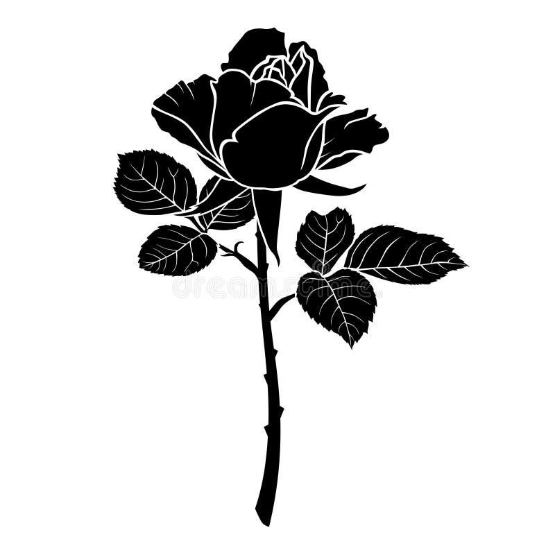 玫瑰花剪影_download 玫瑰花的剪影 库存例证.