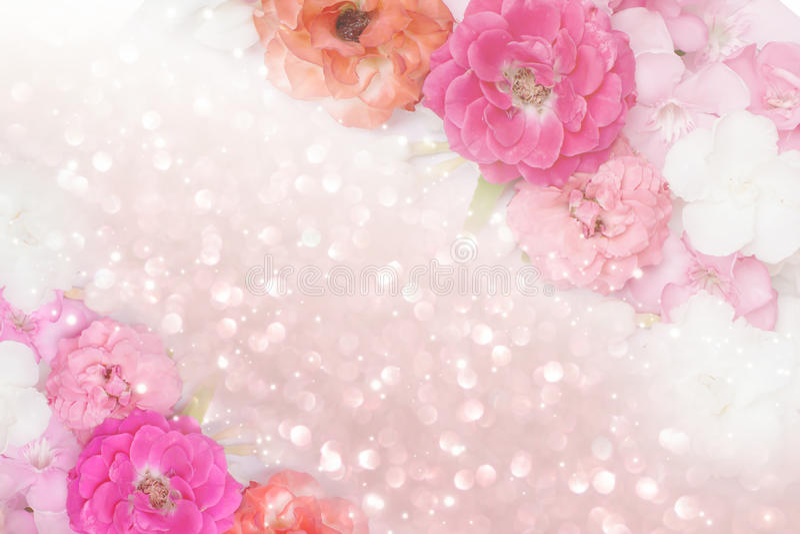 玫瑰花边界闪烁背景柔和的淡色彩口气 免版税库存照片
