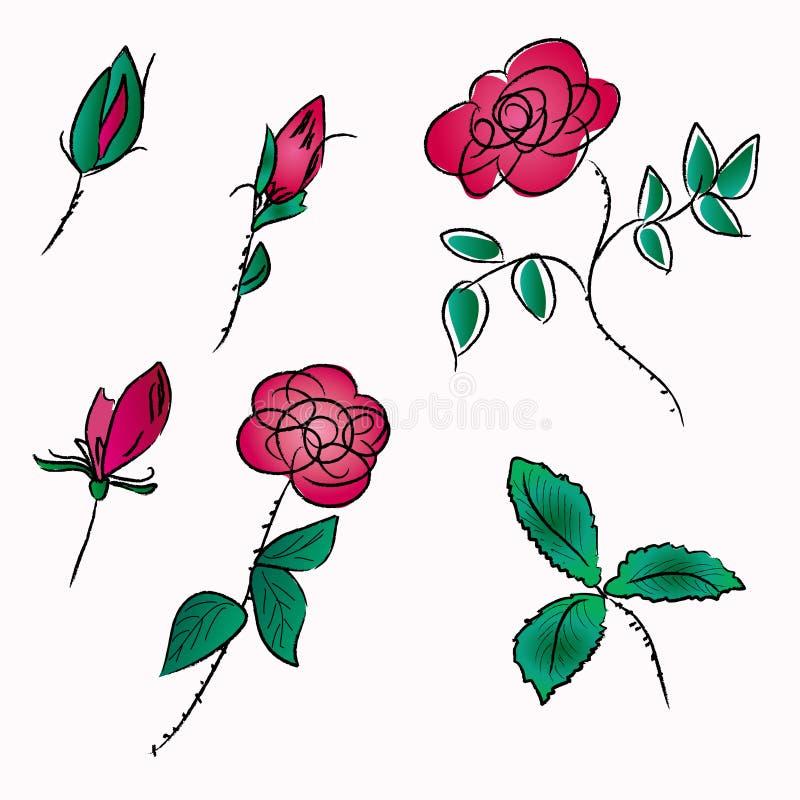 玫瑰草图 皇族释放例证