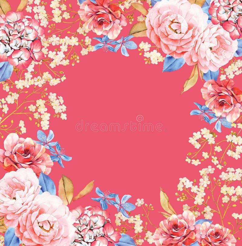 玫瑰,八仙花属花水彩在红色的框架构成 向量例证