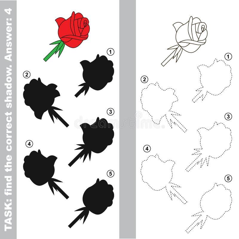 玫瑰 发现真实的正确阴影 向量例证