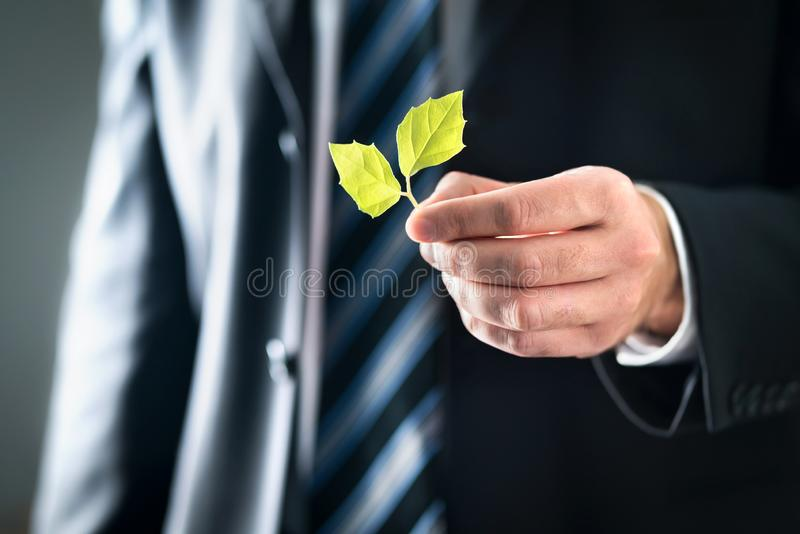 环境律师或政客有自然和不伤环境的价值的 拿着绿色叶子的衣服的商人 免版税库存图片