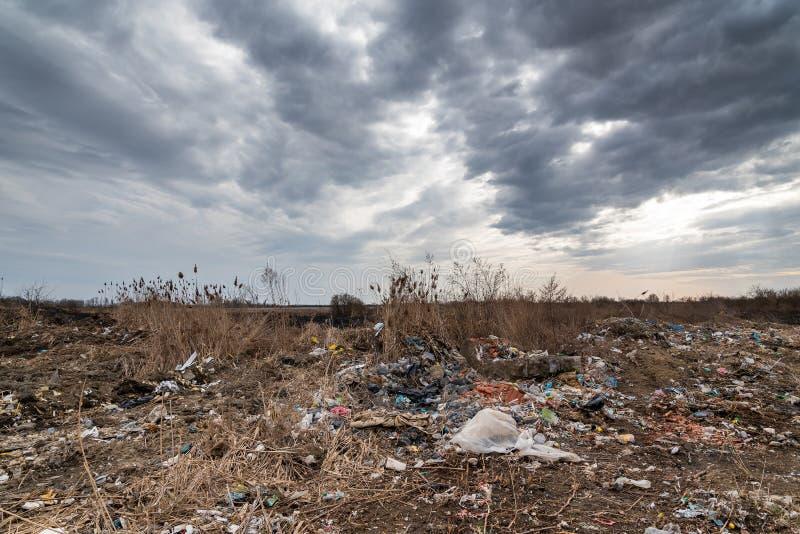环境湖被污染的污染垃圾