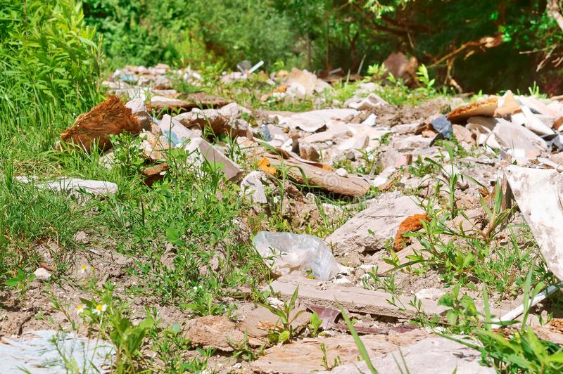 环境的污染由人,残骸的在森林里 免版税库存照片