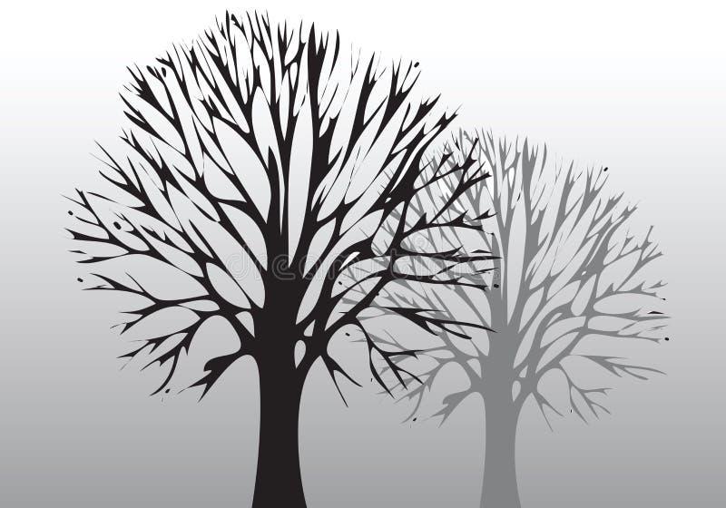 环境结构树 免版税库存照片