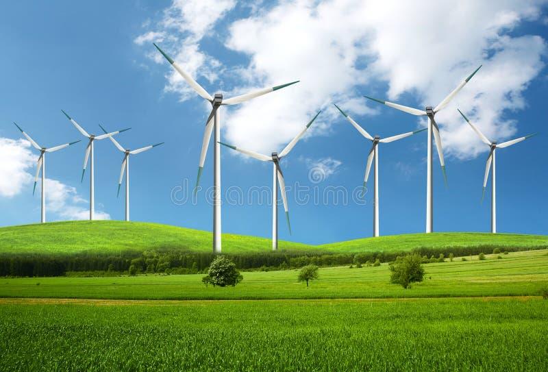 环境绿色自然 免版税库存图片