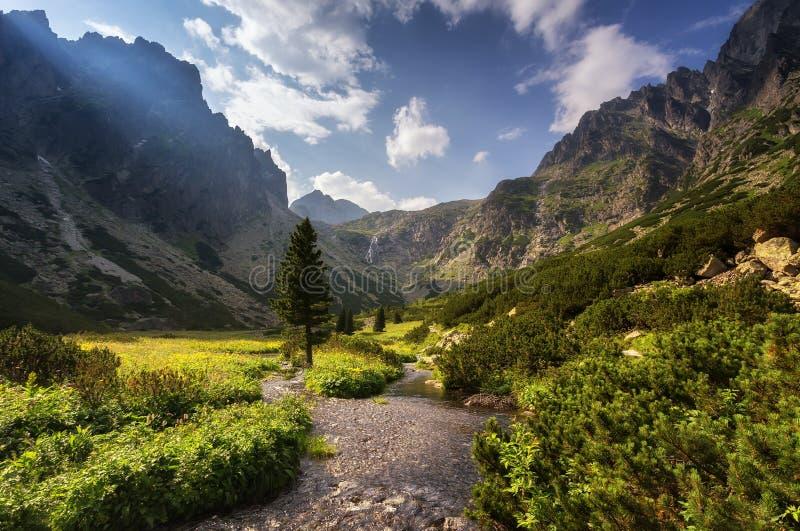 环境美化与一个山谷的河在山别针中 免版税库存图片