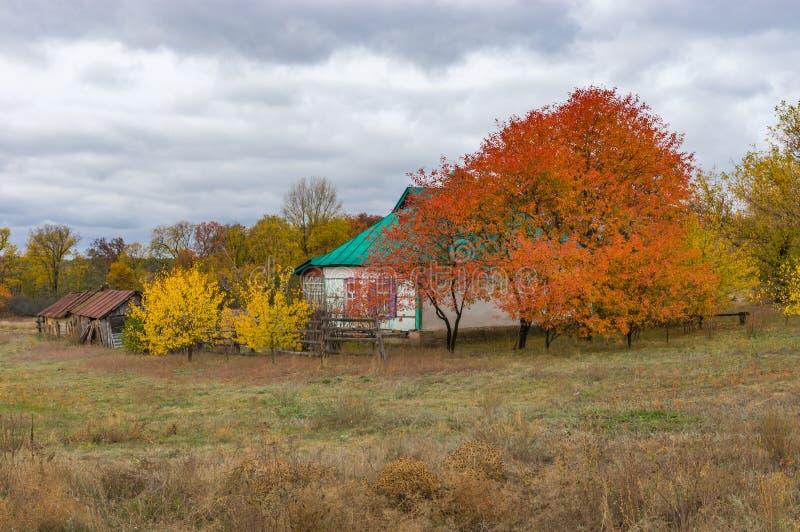环境美化与小农庄在Dem ` yanivka村庄, Poltavskaya oblast,乌克兰 免版税库存图片