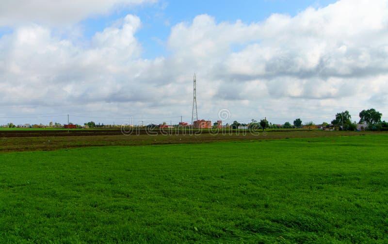 环境美化与绿草领域和蓝天 免版税库存图片