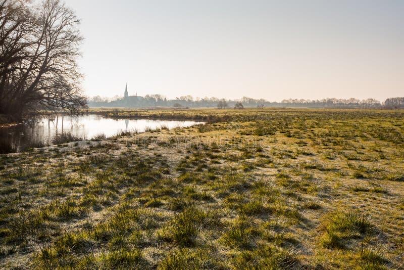 环境美化与自然池塘和结霜的丛草 库存照片