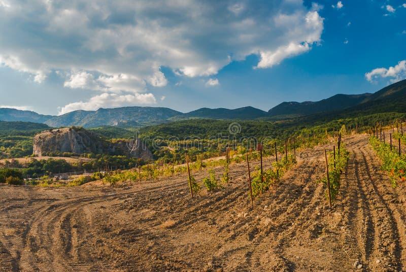 环境美化在克里米亚半岛山在Krasnokamianka附近小村庄  库存图片