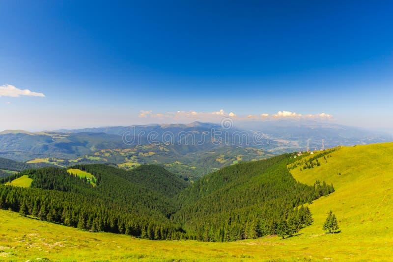 环境美化在喀尔巴阡山脉, parang山,罗马尼亚 免版税库存照片