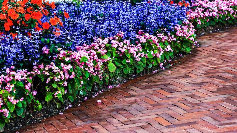 环境美化在庭院里 免版税库存照片