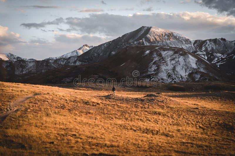 环境美化,日落视图在独立通行证靠近亚斯本,科罗拉多 免版税图库摄影