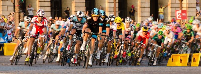 环法自行车赛Pelloton 免版税库存图片