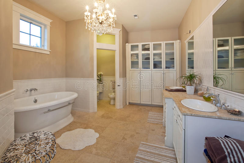 现代主浴室 库存图片