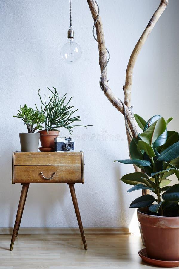 现代公寓晴朗的白天各自的设计元素的都市植物 免版税库存图片