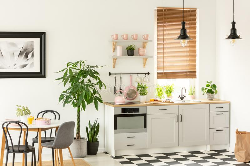 现代厨房内部的真正的照片与碗柜、植物、架子和桃红色辅助部件的在一张餐桌和椅子旁边 图库摄影