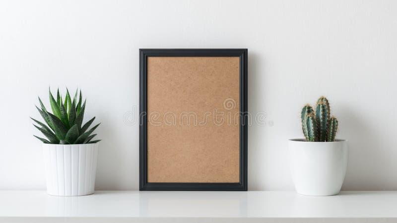 现代室装饰 各种各样的仙人掌和多汁植物用不同的罐 大模型海报 库存图片