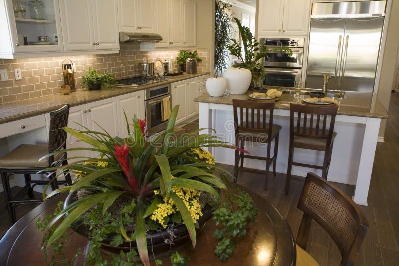 现代家庭厨房的豪华 库存图片